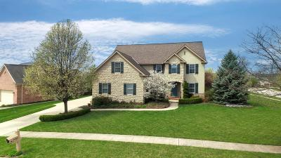 Single Family Home Contingent Finance And Inspect: 9755 Fresno Court
