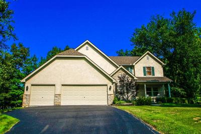 Single Family Home Contingent Finance And Inspect: 9795 New California Drive