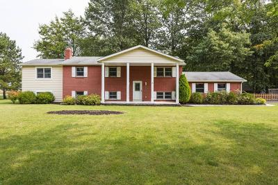 Dublin Single Family Home For Sale: 6110 Holiday Lane