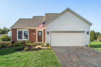 Blacklick Single Family Home Contingent Finance And Inspect: 7987 Eurogrey Court