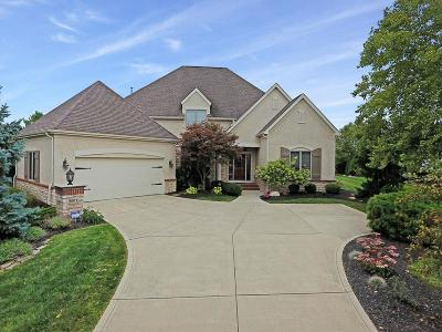 Dublin Single Family Home Contingent Finance And Inspect: 8073 Campbell Lane