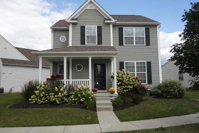 Blacklick Single Family Home Contingent Finance And Inspect: 7840 Ashenden Drive