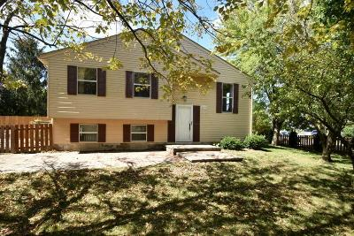 Powell Single Family Home Contingent Finance And Inspect: 2107 Summit Row Boulevard