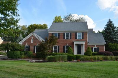 Dublin Single Family Home For Sale: 4893 Carrigan Ridge Drive