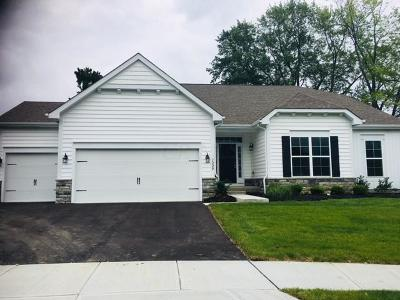Westerville Single Family Home For Sale: 1200 Denmark Place