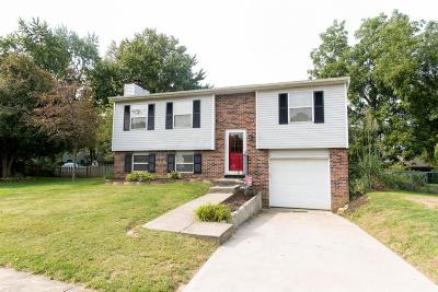 Reynoldsburg Single Family Home Contingent Finance And Inspect: 6449 Gunstock Court