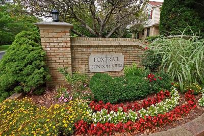 Condo Sold: 522 Foxtrail Circle E