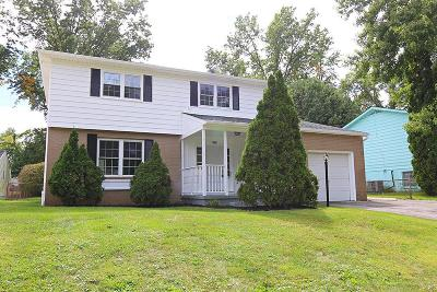 Reynoldsburg Single Family Home For Sale: 6593 Red Coach Lane