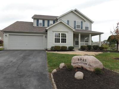 Grove City Single Family Home For Sale: 4843 Snowy Creek Drive