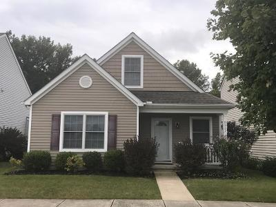 Westerville Single Family Home For Sale: 6067 Eden Valley Drive