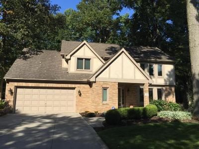 Westerville Single Family Home For Sale: 101 Keethler Drive N