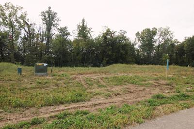 Plain City Residential Lots & Land For Sale: 8227 Waterford Way #Lot 9