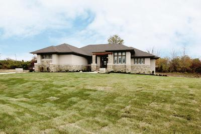 Plain City Single Family Home Contingent Finance And Inspect: 8210 Waterford Way #Lot 2