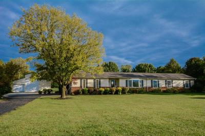 Hilliard Single Family Home For Sale: 7643 Patterson Road
