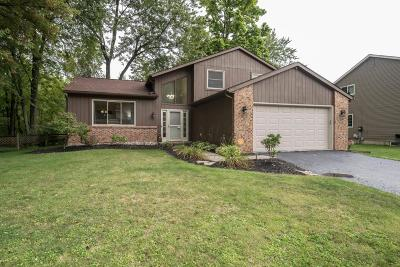 Westerville Single Family Home Contingent Finance And Inspect: 3966 Bluebird Court