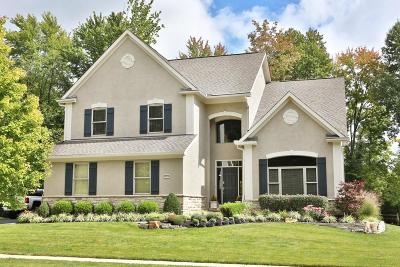Blacklick Single Family Home For Sale: 1876 Chateaugay Way
