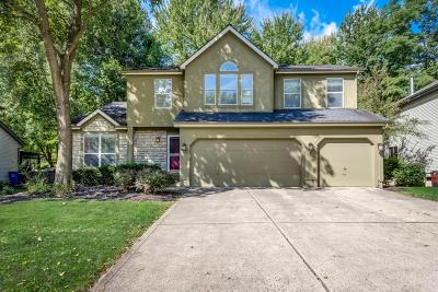 Westerville Single Family Home For Sale: 8355 English Oak Drive
