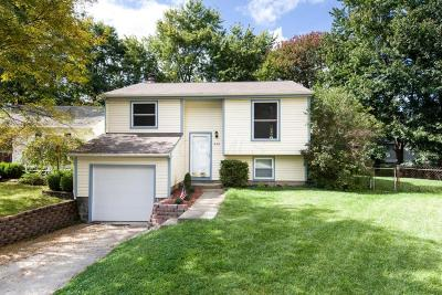 Westerville Single Family Home For Sale: 995 Swanton Court