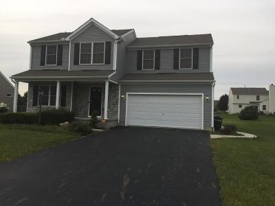 Pickerington Single Family Home For Sale: 11675 Bridgewater Drive