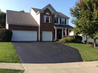 Franklin County, Delaware County, Fairfield County, Hocking County, Licking County, Madison County, Morrow County, Perry County, Pickaway County, Union County Single Family Home For Sale: 2321 Vista Court