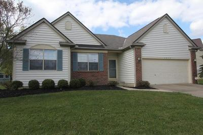 Westerville Single Family Home For Sale: 6658 Deagle Drive