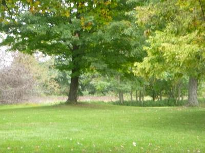Newark Residential Lots & Land For Sale: Cherry