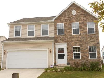 Blacklick Single Family Home For Sale: 531 Stone Shadow Drive