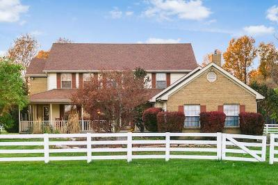 Blacklick Single Family Home For Sale: 1885 Dixon Road SW