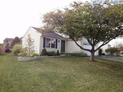 Hilliard Single Family Home For Sale: 5007 Hilliard Green Drive
