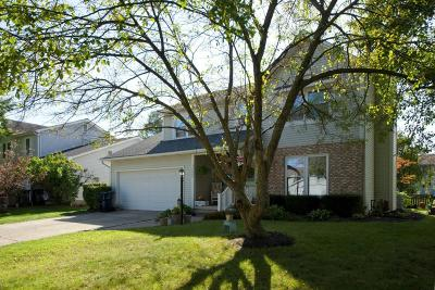 Hilliard Single Family Home Contingent Finance And Inspect: 4809 Leybourne Drive
