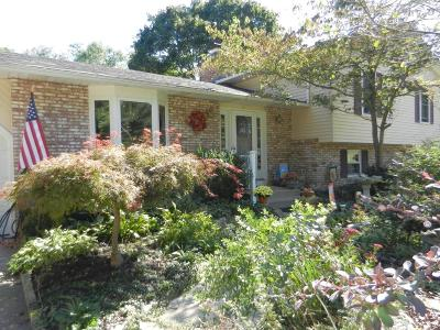 Single Family Home For Sale: 139 Mill Race Road