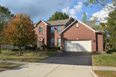 Single Family Home For Sale: 6817 Mingo Drive