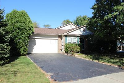 Grove City Single Family Home Contingent Finance And Inspect: 4124 Demorest Road