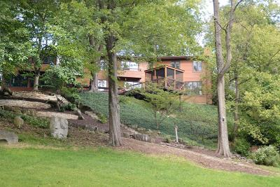 Delaware County, Franklin County, Union County Single Family Home For Sale: 989 Noe Bixby Road