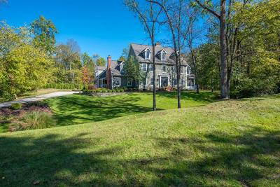 Dublin Single Family Home For Sale: 7676 Red Bay Court