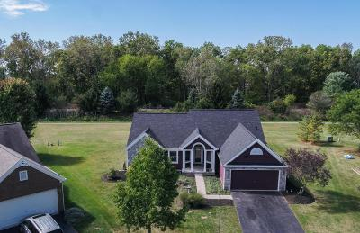 Powell Single Family Home For Sale: 253 Longmeadow Court