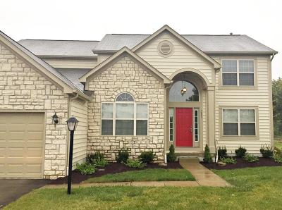 Grove City Single Family Home Contingent Finance And Inspect: 5803 Daffodil Court
