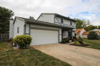 Canal Winchester Single Family Home Contingent Finance And Inspect: 290 Old Coach Place