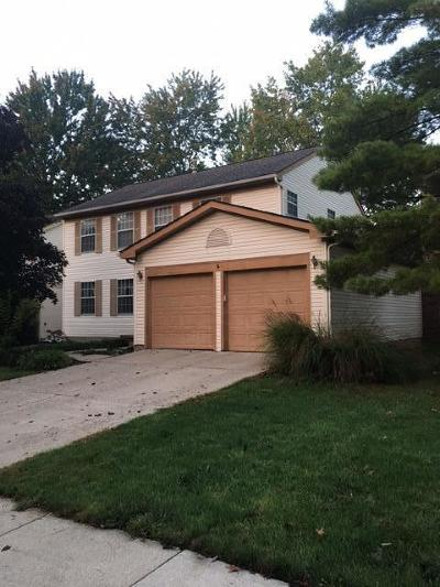 Westerville Single Family Home For Sale: 8011 Storrow Drive