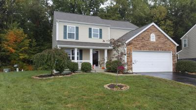 Single Family Home For Sale: 9194 Jackies Bend