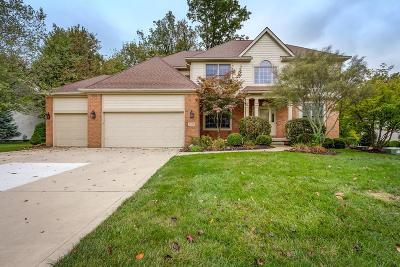 Pickerington Single Family Home For Sale: 9095 Cotswold Drive