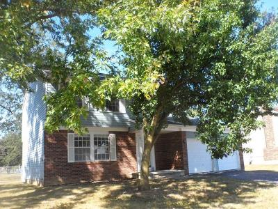 Grove City Single Family Home For Sale: 2443 Northbranch Road