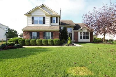 Delaware County, Franklin County, Union County Single Family Home For Sale: 5971 Cheyenne Creek Drive