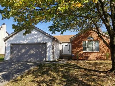 Single Family Home For Sale: 1208 Starlight Drive