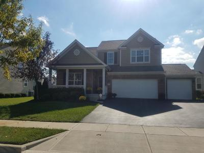 Grove City Single Family Home For Sale: 1371 Palay Drive