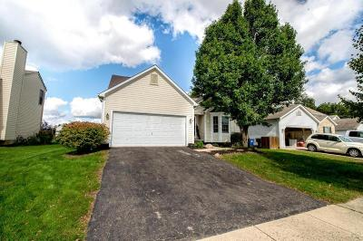 Grove City Single Family Home For Sale: 3512 Brook Spring Drive