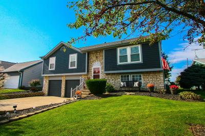Single Family Home For Sale: 430 Carriage Drive