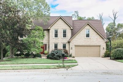 Westerville Single Family Home For Sale: 960 Valleyview Drive
