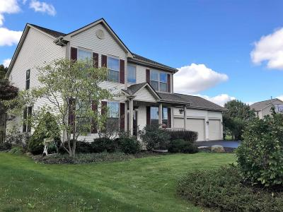 Single Family Home For Sale: 1065 Mastell Drive