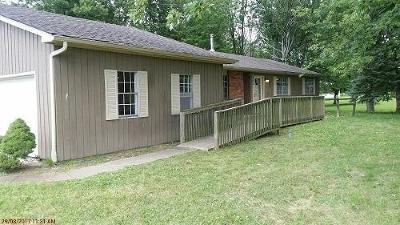 Canal Winchester Single Family Home For Sale